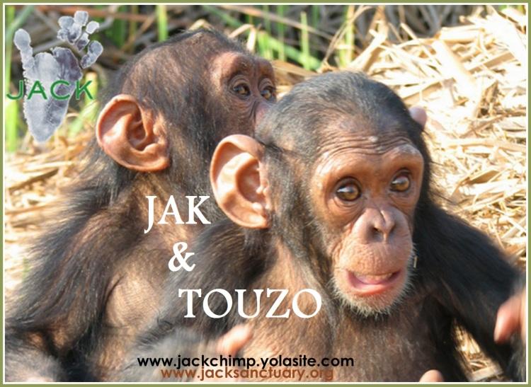JAK & TOUZO