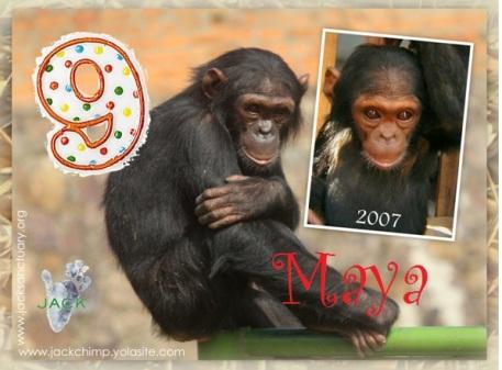 maya 9 ans