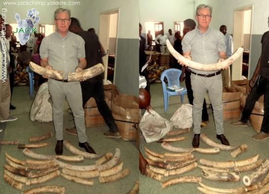 trade ivory