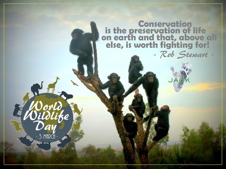 Journee mondiale de la via sauvage