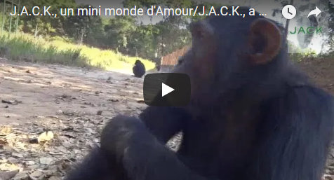 Capture plein écran 25082018 185306